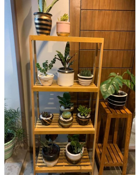 Wooden Plant Stand For Indoors (Pre-order Only)