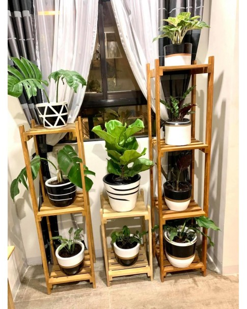 Plant Stand For Indoors (Pre-order Only)