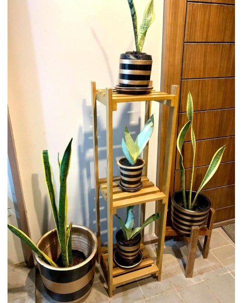 Wooden Plant Stand (Pre-order Only)