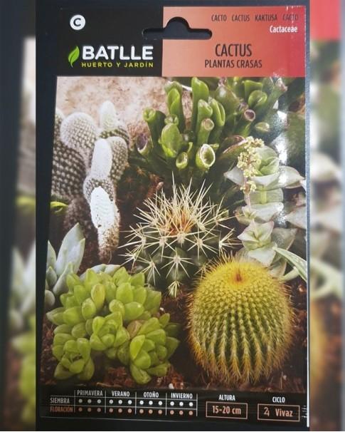 Cactus DFS