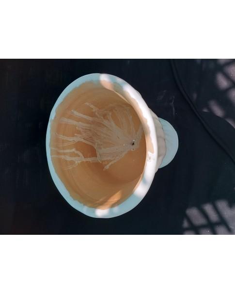 Clay Pot Kolambi Style 60 CM Ht