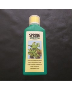 Spring Pro Florist