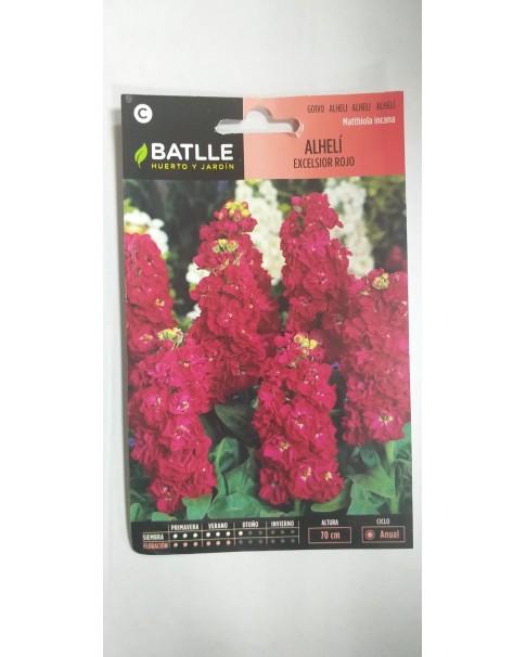 Matthiola Incana - alheli excelsior rojo