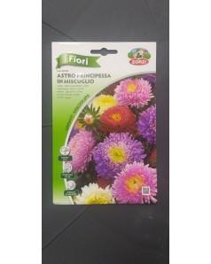 Aster Flower Seeds (Astro Principessa)
